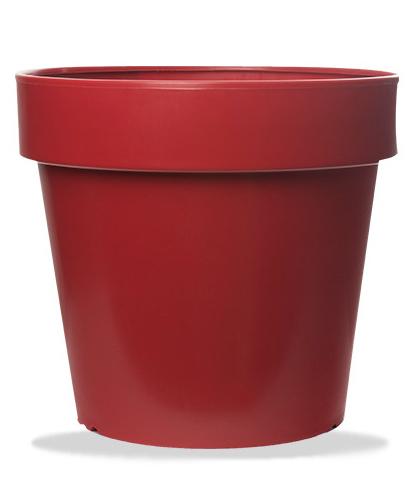 Rojo Lavanda